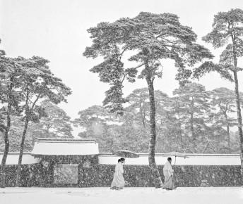 Werner Bischof – Shinto priests, Meiji Temple. Kyoto, Japan, 1951